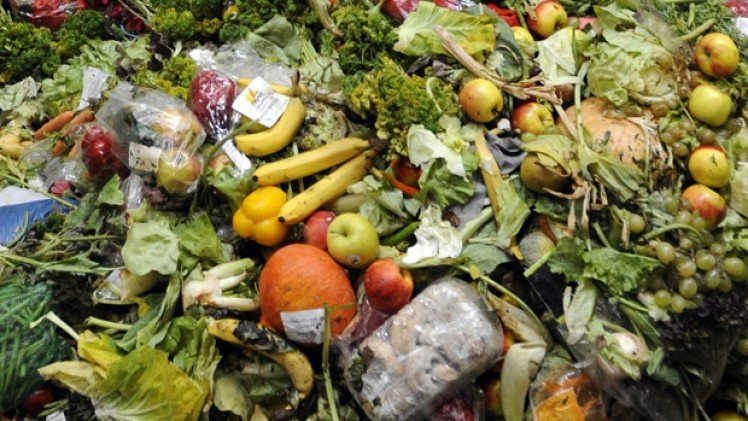 Top tips to help food and drink wholesalers reduce waste