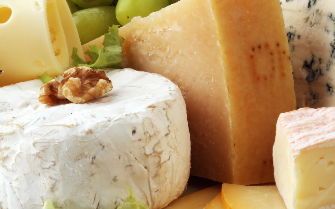 Oporteo to help Cheese Plus achieve B2B ecommerce success