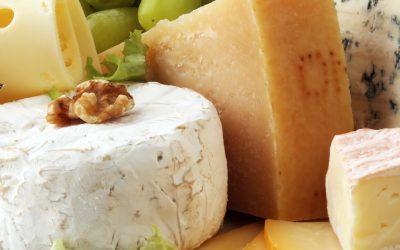 Oporteo to help Cheese Plus achieve B2B ecommerce success
