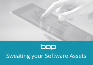 Sweating the software assets whitepaper