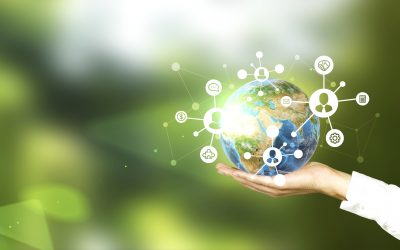 Technology is key for wholesalers to achieve sustainability goals